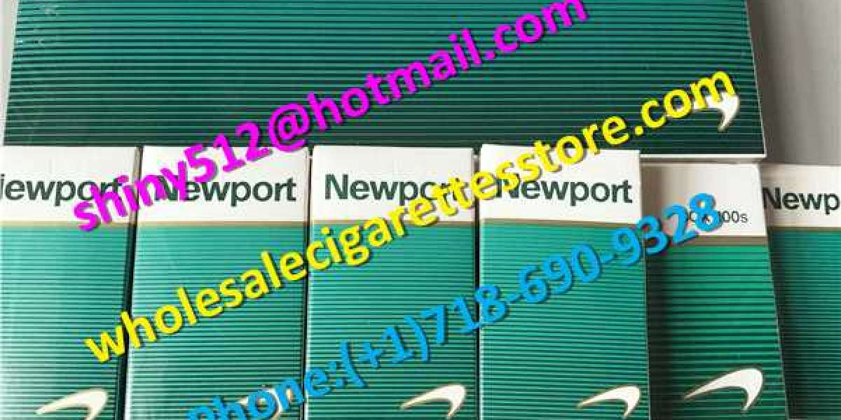 Wholesale Newport Cigarettes Cartons group economy