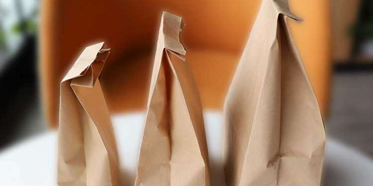 Are craft paper bags biodegradable?
